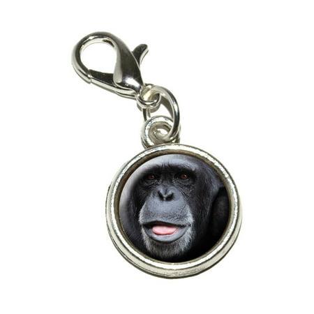 Chimpanzee Chimp - Ape Monkey Bracelet Charm](Monkey Charm)