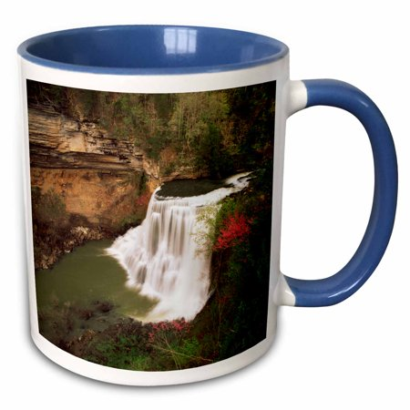 3dRose Burgess Falls State National Park, Tennessee, USA - US43 AJE0287 - Adam Jones - Two Tone Blue Mug, (Wisconsin's Best State Parks)