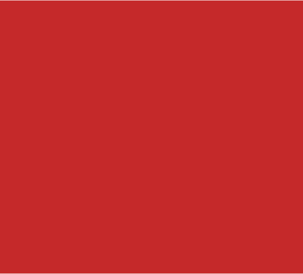 "BAZIC Red Foam Board 20"" x 30"" 25Pcs by DDI"