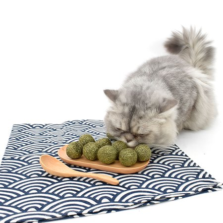 Catnip Ball Toy Cat Mint Ball Natural Catnip Cleaning Playing Chew Claw Toy Pet Supplies - image 6 of 7