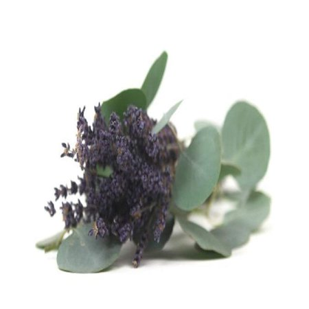 LAVENDER EUCALYPTUS FRAGRANCE OIL - 2 OZ - FOR CANDLE & SOAP MAKING BY VIRGINIA CANDLE SUPPLY - FREE S&H IN USA