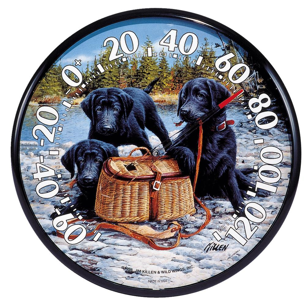 Chaney Instrument Puppies Thermometer 01678