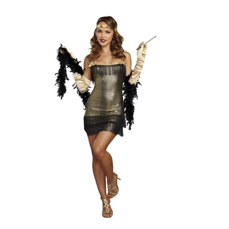 Dreamgirl Women's 1920's Shimmy Shake Flapper Costume Set (1920s Costume Hire)