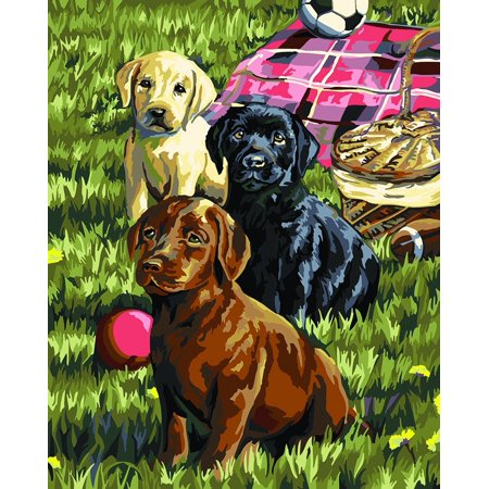 Paint by Number Kit (16 by 20-Inch), 22079 Puppy Picnic, Superbly detailed classic designs By Plaid Creates