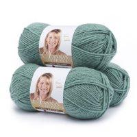 Lion Brand Yarn Vanna's Choice Sage Basic Medium Acrylic Green Yarn 3 Pack