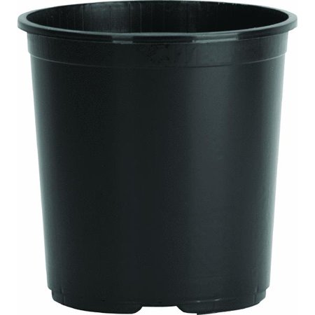 Myers Black Flower Pot