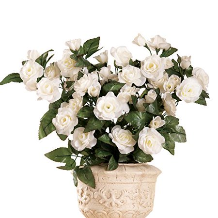 Accent Three Roses - Floral Rose Bushes - Set Of 3 White
