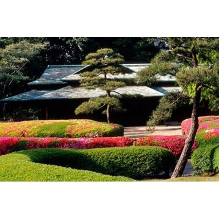 Azaleas At The Imperial Palace East Gardens Tokyo Japan Canvas Art   Jaynes Gallery  Danitadelimont  26 X 17
