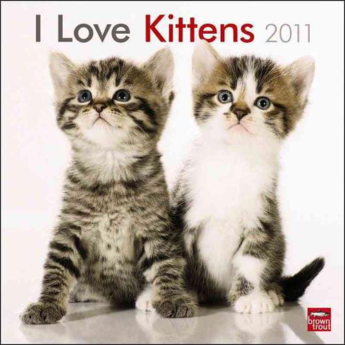 I Love Kittens 2011 Calendar