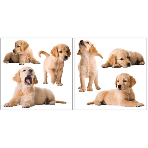 Brewster Home Fashions Euro Puppy Wall Decal