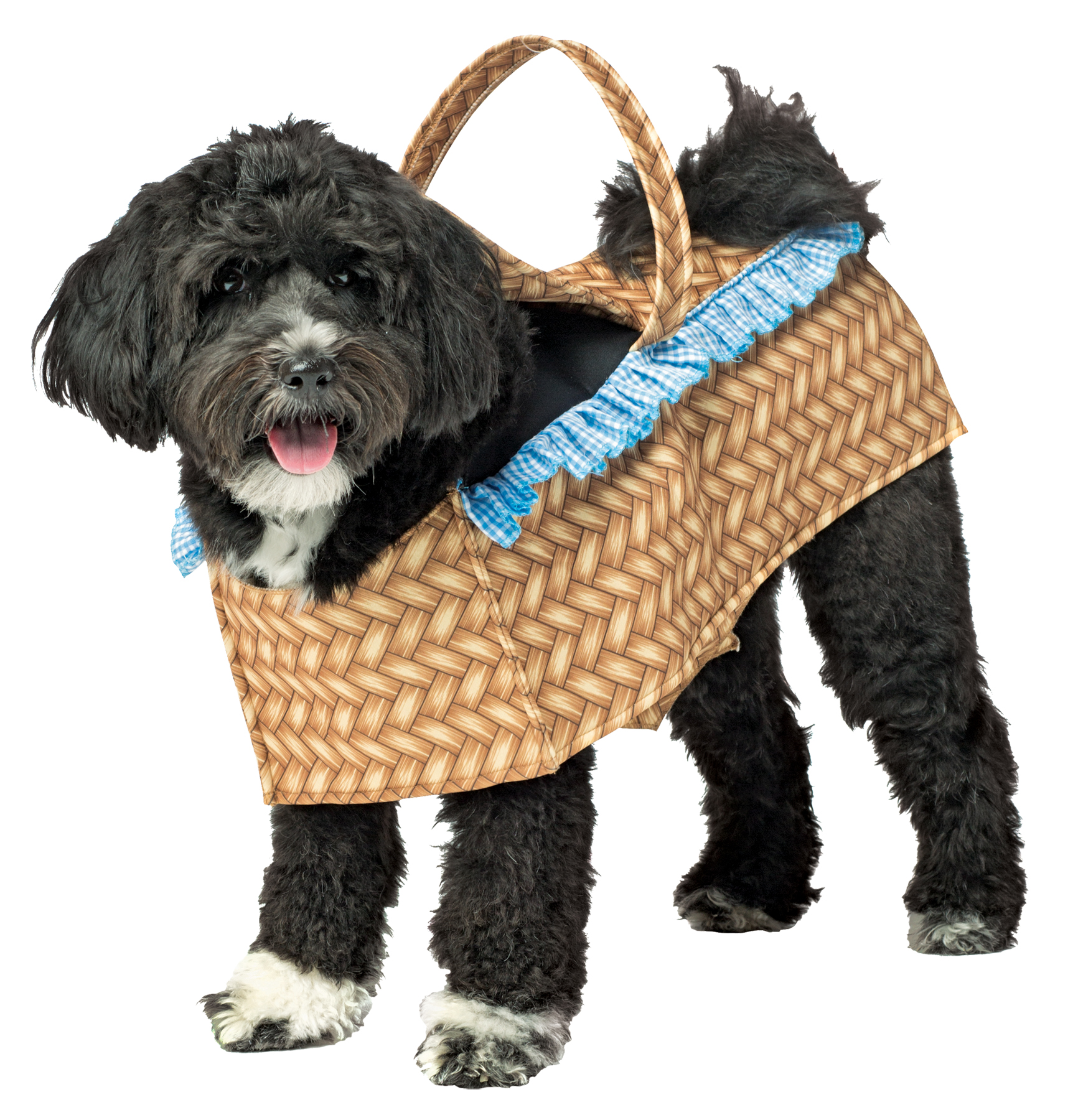 Toto Wizard Of Oz Dorothy Carrying Toto Dog In Basket Dog Costume Halloween