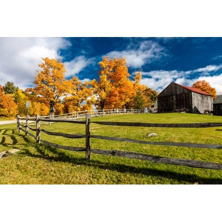 New England farm with Autumn Sugar Maples Print Wall - Maples Farm Halloween