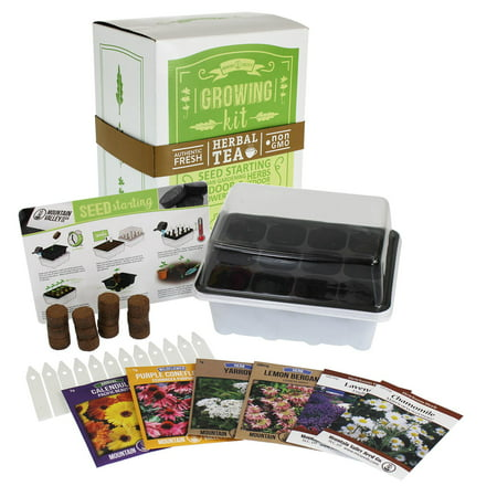 - Indoor Medicinal & Herbal Tea Herb Garden Starter - Basic Kit - 6 Non-GMO Varieties - Seeds: Chamomile, Lavender, Lemon Mint, Calendula, Echinacea, Yarrow