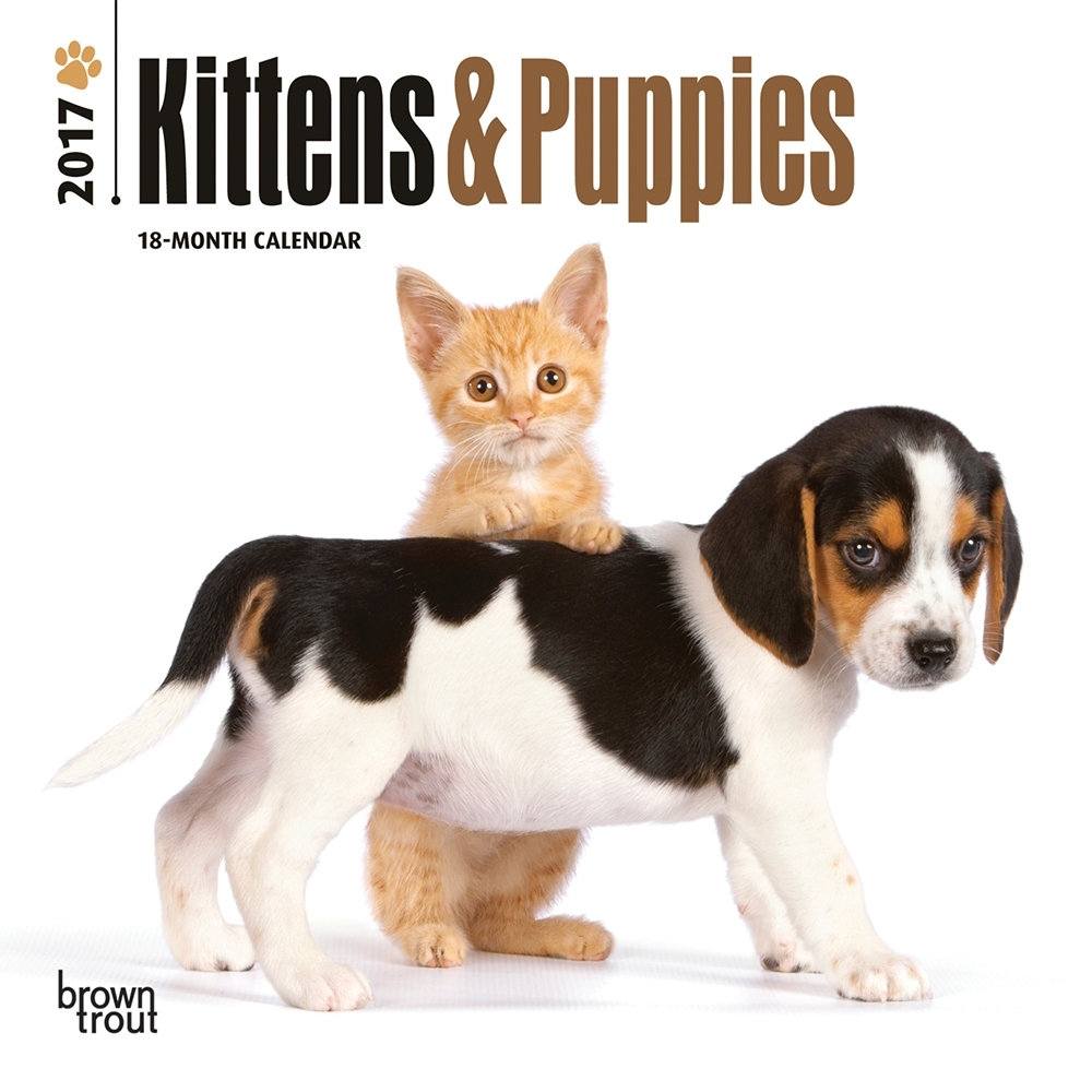 Kittens and Puppies Mini Wall Calendar