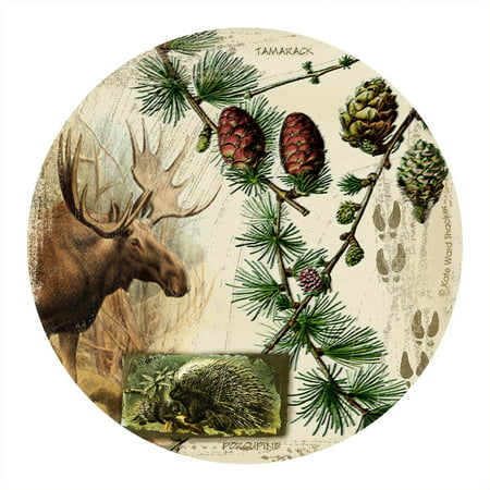 Thirstystone Drink Coasters Set, Bull Moose Collage