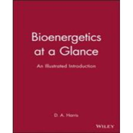 Bioenergetics At A Glance  An Illustrated Introduction