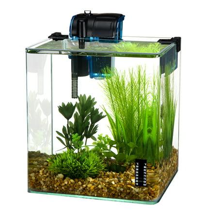 - Penn Plax Radius 3.4-Gallon Curved Corner Glass Aquarium Kit