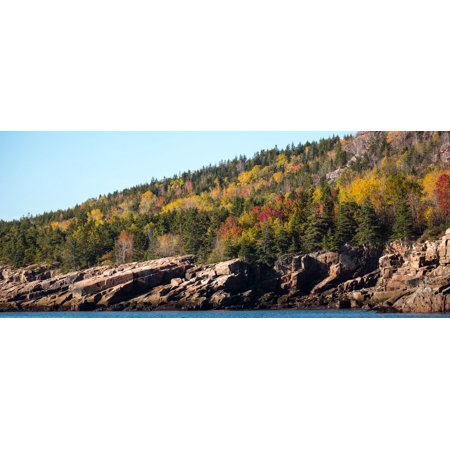 Trees on mountain Mount Desert Island Acadia National Park Hancock County Maine USA Poster Print by Panoramic Images - Desert Mountain Park Halloween