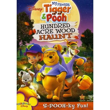 My Friends Tigger Amp Pooh Hundred Acre Wood Haunt