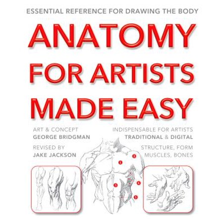 Anatomy for Artists Made Easy : Essential Reference for Drawing the Body](Halloween Drawing Easy)