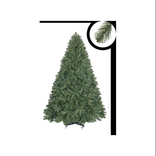 6.5' Pre-Lit Olympia Pine Full Artificial Christmas Tree - Warm Clear LED Lights