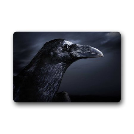 WinHome Halloween Raven Bird Doormat Floor Mats Rugs Outdoors/Indoor Doormat Size 23.6x15.7 inches - Floor 5 Halloween 100 Floors