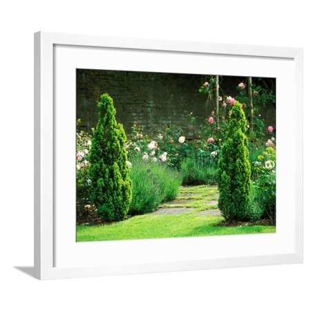 Country Garden Filled with Roses and Borders with a Pond and Old House, Wiltshire Framed Print Wall Art By Lynn Keddie