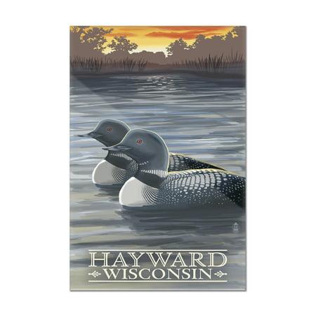 Hayward, Wisconsin - Loons - Lantern Press Artwork (8x12 Acrylic Wall Art Gallery Quality)