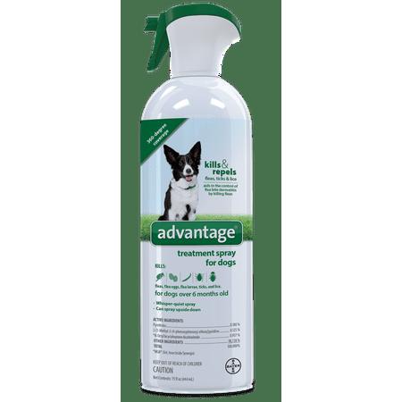 Bayer Advantage Flea Tick and Lice Treatment Spray Dog and Puppy, 15 Oz