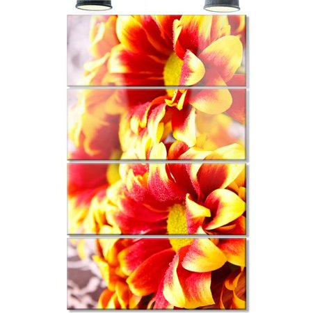 Red Flower Photo - Design Art Red Yellow Flower Background Photo' 4 Piece Photographic Print on Metal Set