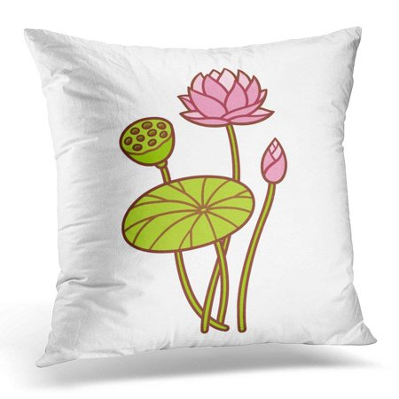 BSDHOME Pink Cartoon Lotus Plant Botanical Flower and Bud Leaf and Seed Pod Waterlily Drawing White Beautiful Pillow Case Pillow Cover 20x20 inch - image 1 de 1