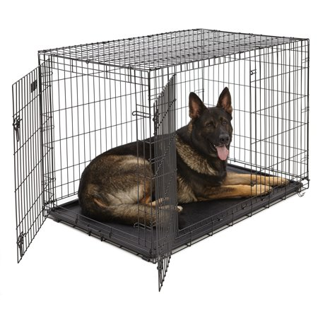 MidWest Double Door iCrate Metal Dog Crate (Midwest Icrate Double Door Folding Dog Crate)