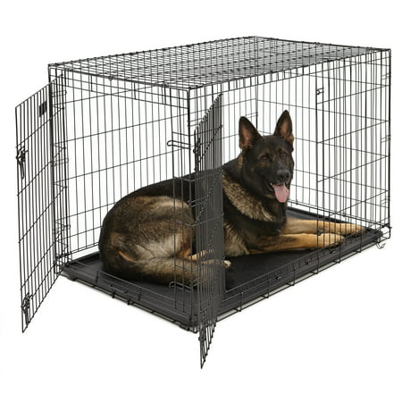 Large Midwest Life Stages - MidWest Double Door iCrate Metal Dog Crate