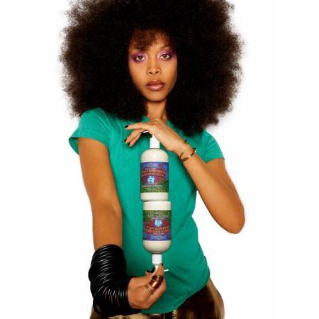Erykah Badu Poster Metal Sign 8Inx 12In