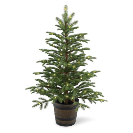 4' Norwegian Spruce Entrance Tree with Clear Lights