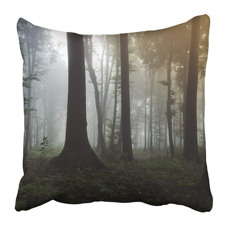 EREHome Colorful Forest Landscape Mysterious Lights in Fantasy Woods Scenery with Fog Pillow Case Cushion Cover 16x16 inch - image 1 de 1