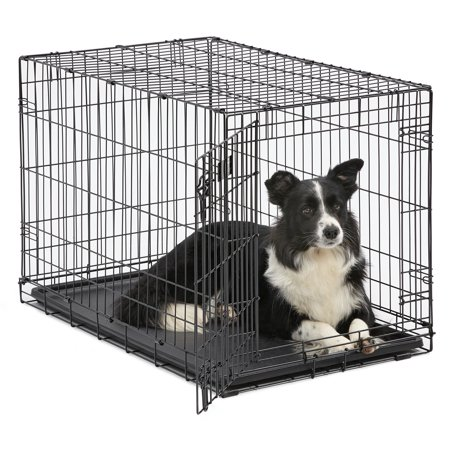 MidWest Single Door iCrate Metal Dog Crate (Princess Dog Cage)