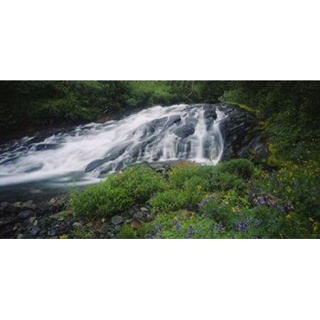 Waterfall in the forest Mt Rainier National Park Washington State USA Poster