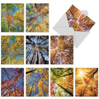 10 Assorted Blank Note Cards with Envelopes (4 x 5.12 Inch) - Colorful Tree Leaves, Nature & Landscape Cards Boxed M2006