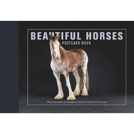 Beautiful Horses Postcard Book : 30 Postcards of Champion Breeds to Keep or to Send