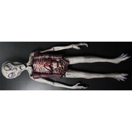 Alien Autopsy Foam Latex Tabletop Two Piece Halloween Decoration Prop - Halloween Autopsy Game
