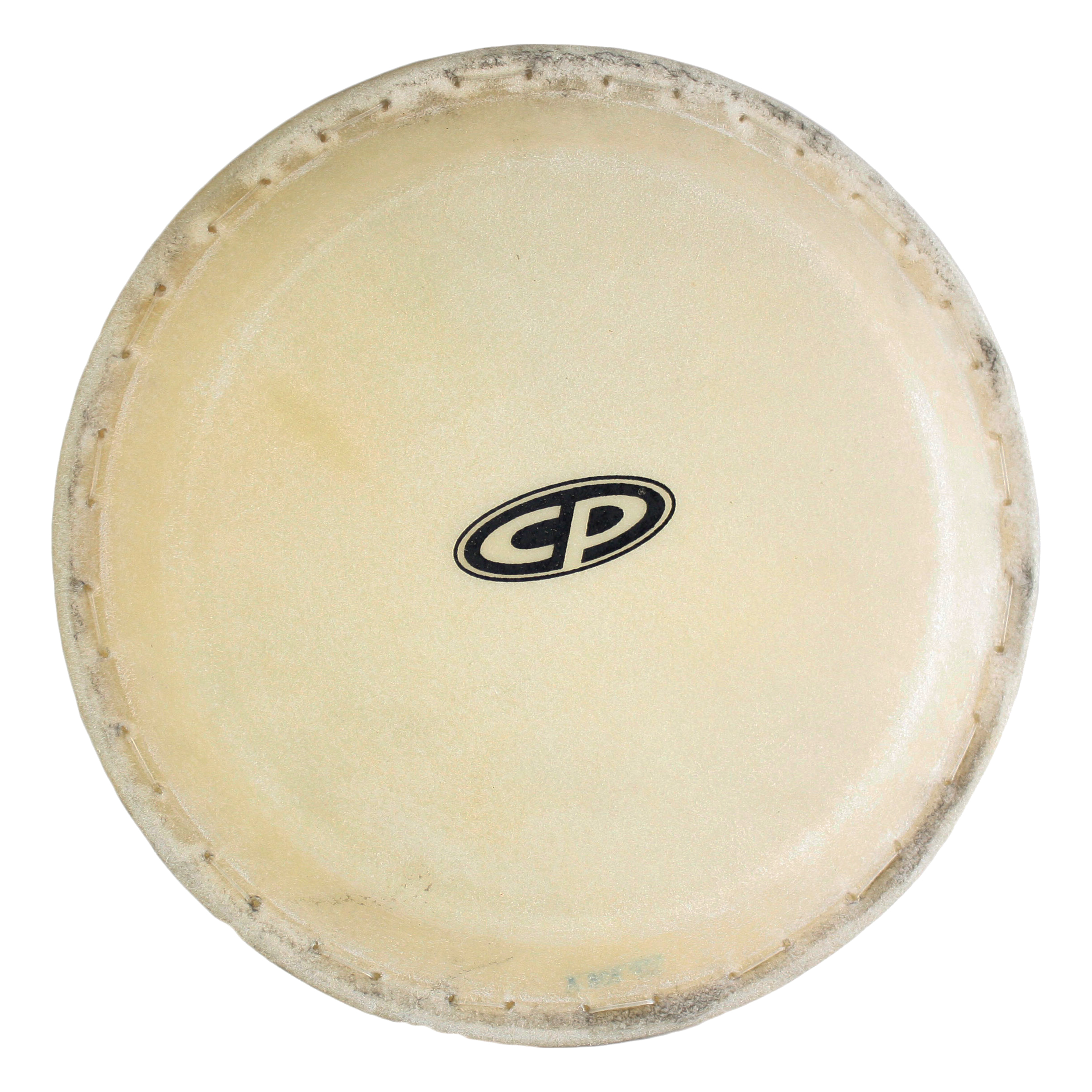 "Latin Percussion CP636B 10"" Replacement Conga Head by LP"