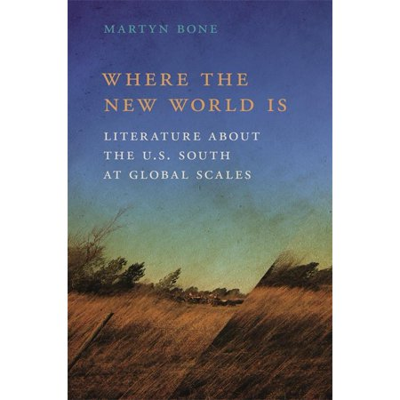 New Southern Studies: Where the New World Is : Literature about the U.S. South at Global Scales (Hardcover)