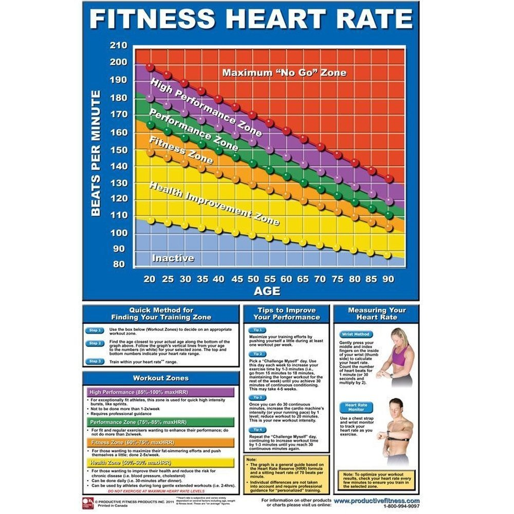 Productive Fitness Poster Series | Heart Rate Chart Training For At Home Use