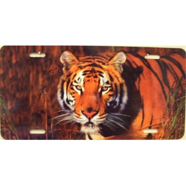 LP - 1188 Tiger License Plate - AB028