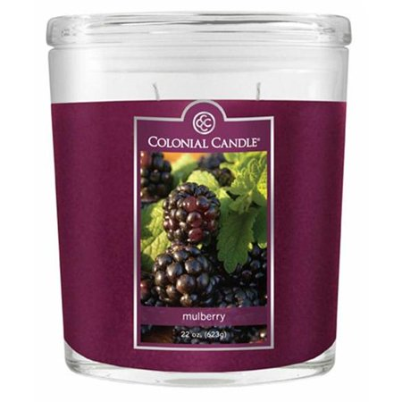 Fragranced in-line Container CC022.445 22oz. Oval Mulberry Candles - Pack of 2