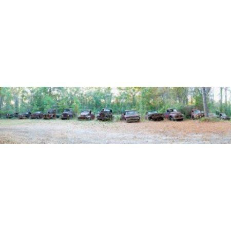 - Old rusty cars and trucks in a field Crawfordville Wakulla County Florida USA Poster Print
