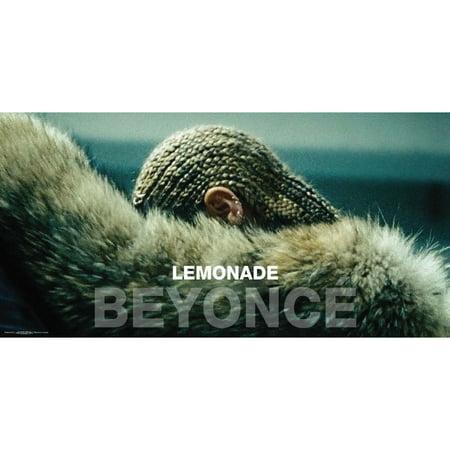 Beyonce Domestic Poster