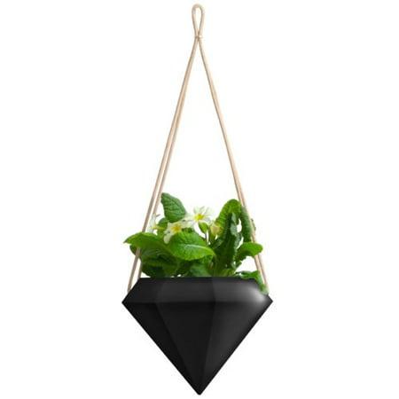 Wrought Studio Chloris Diamond Ceramic Hanging Planter