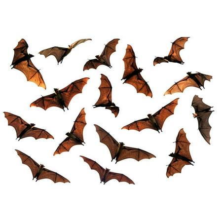 spooky halloween flying fox fruit bats print by longjourneys